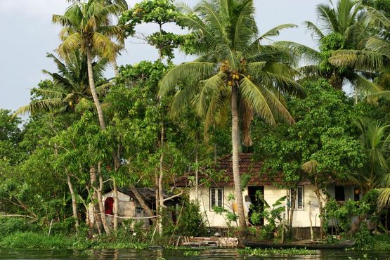 Kumarakom Lake Resort - Backwaters - India