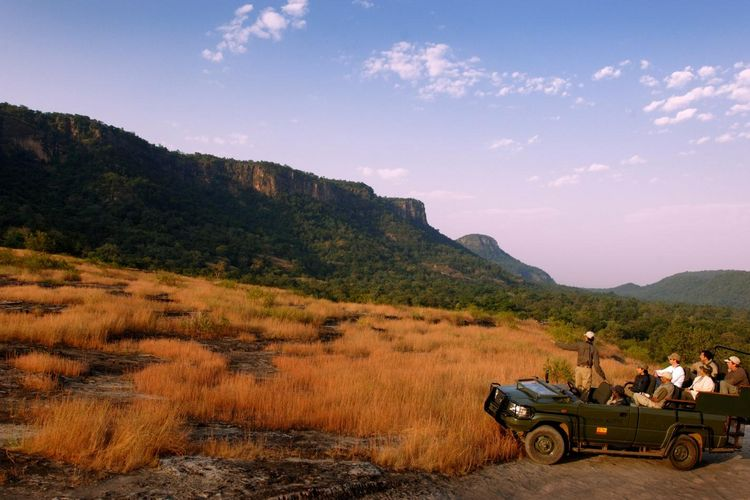Mahua Kothi Lodge - Jeep Safari - India