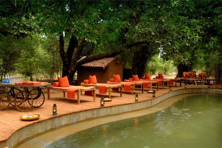 Mahua Kothi Lodge - Pool Terrace - India